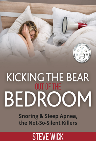 Kicking the Bear Book Cover